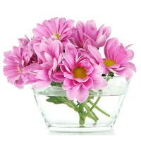 responsive-web-design-flower-00047-thank-you-07
